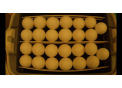 Яйцо Инкубационное супер несушки