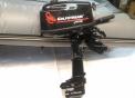 Лодочный мотор Golfstream T5 BMS
