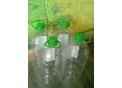 Продам бутылки ПЭТ 5л