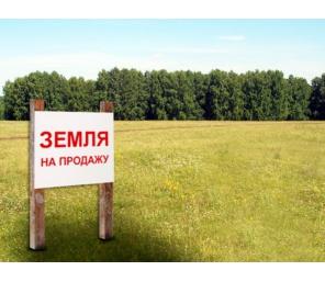 Продам земельный в с. Покровское