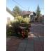 Продается двухэтажный жилой дом в п. Северный по ул. Лескова/